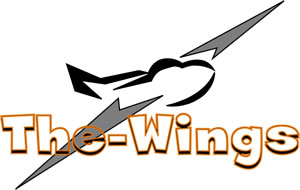 Nouveau logo du site the-wings.fr